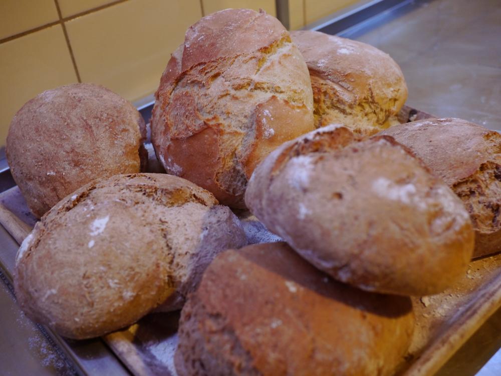 Brood.jpg