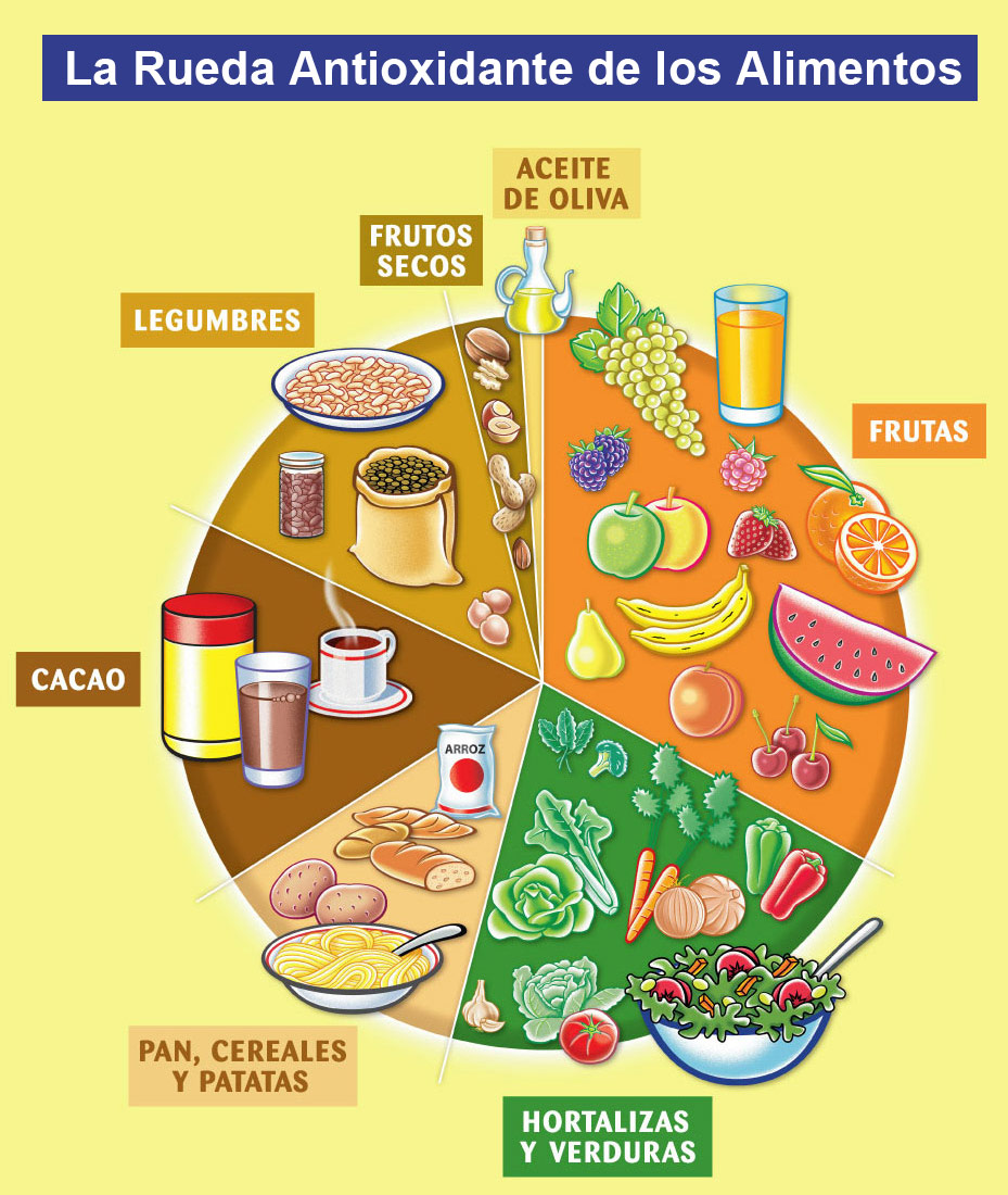 Alimentaci n conciencia y arte alimentos funcionales y enfermedad cardiovascular ecv - Alimentos con probioticos y prebioticos ...