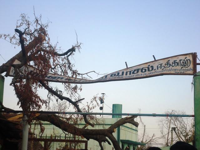 """""""தானே"""" பாதித்த பகுதிகளில் தமுமுக மற்றும் மமக நிர்வாகிகள்"""