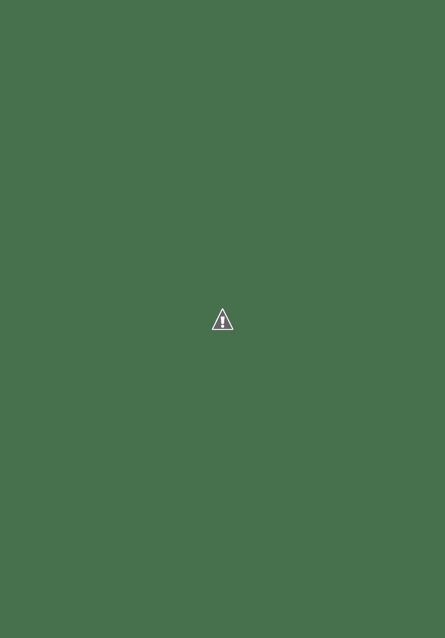 Renza Vermeulen Delicieux Cakes - Google+