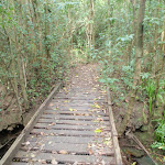 Footbridge over creek (80113)