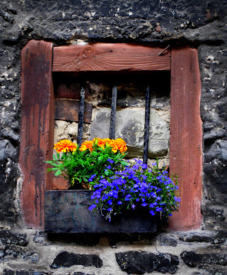 tallinn, fönster, gamla stan