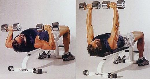 Chest Exercise Dumbbell Flat Bench Press Bodybuilding