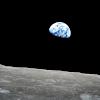 NewRise Earth Avatar