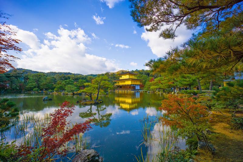 京都 紅葉 金閣寺 写真3