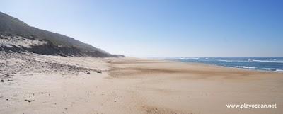 Areeira the beach