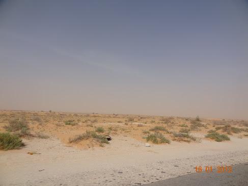 marrocos - Marrocos e Mauritãnia a Queimar Pneu e Gasolina - Página 8 DSC06197