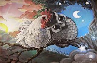 El gallo y el buho