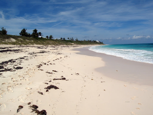 a beach on Elbow Cay.