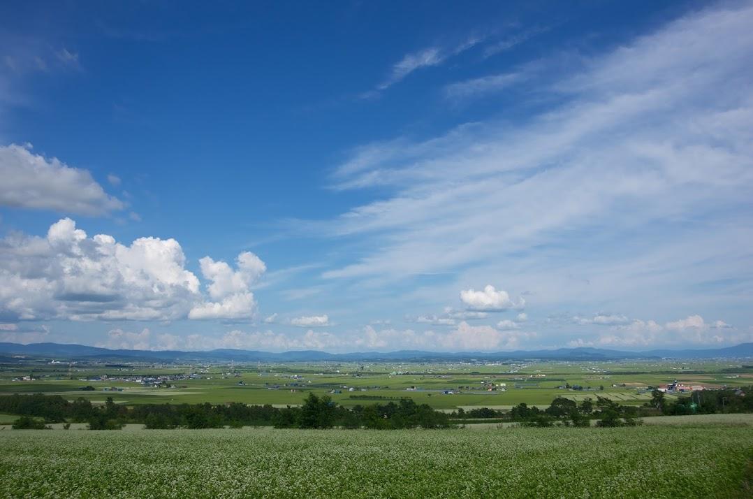 眺望の丘の眼下に広がる北竜町