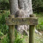 Calala sign on Lady Carrington Drive (32579)