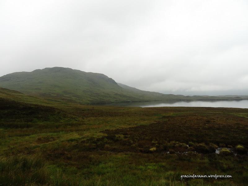 - Passeando até à Escócia! - Página 15 DSC03271