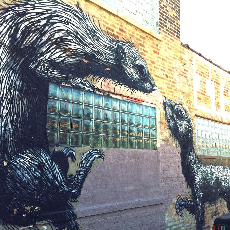 Ferrets in Logan Square, photo by Kim Kovalick
