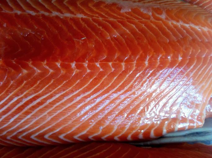 Scottish salmon shelly 39 s seafood fish market for Sushi grade fish market