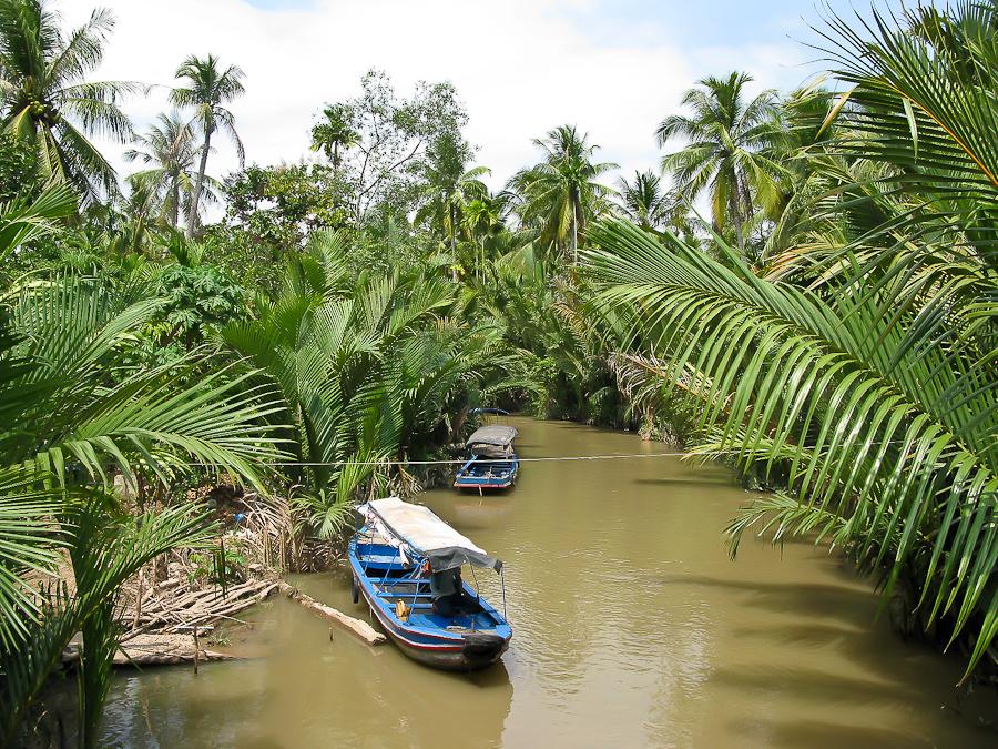 дельта реки де меконг фото сделать корзину
