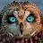 Kevin Eubanks avatar image