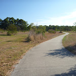 Walking through open grasslands in Green Point Reserve (404026)