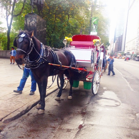 Term Paper Help!!!!: Do Horse Drawn Carriages belong in modern cities?