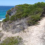 Track to coast off Kangarutha Track (104125)
