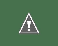 Espiritu del Art