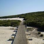 The track across the rockshelf (33113)