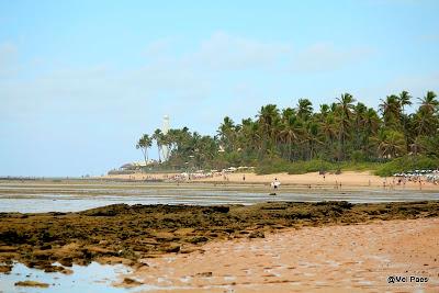 Álbum de fotos de Praia do Forte, BA
