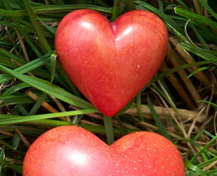 Frases De Amor Loco Frases De Amor Cortas