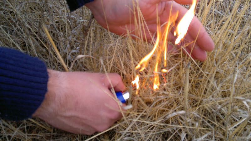 Balanço dos incêndios florestais do distrito de Viseu - Lamego