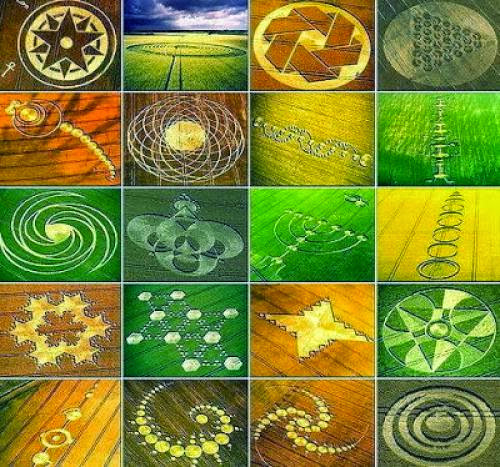 Crop Circles What Are They