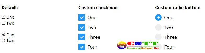 Tùy chỉnh CSS đẹp cho nút Input Radio và Checkbox | CNTT