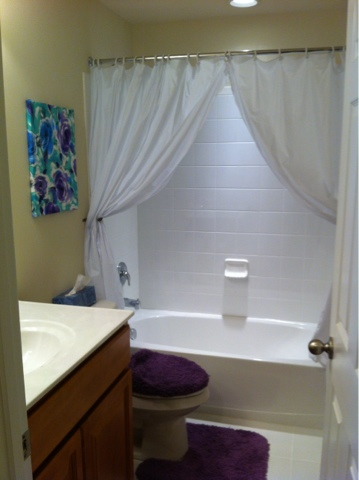 bathroom updates ideas diy cheap and easy bathroom update diy danielle 10582