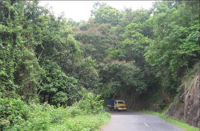 Snaps from Idukki part two 4