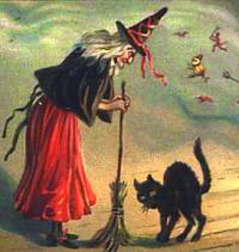 Bruxas E Gatos