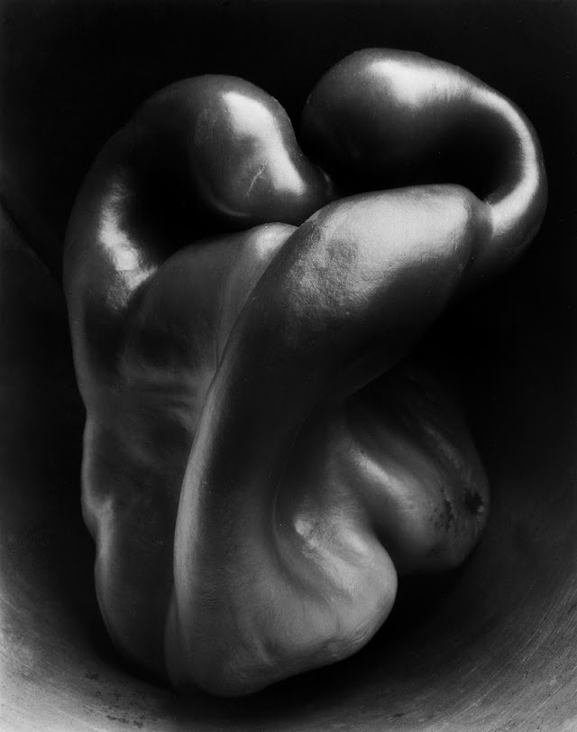 Edward Weston, Pepper #30