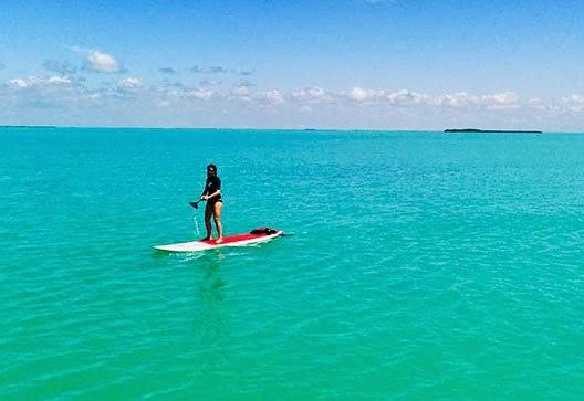 Key Largo Kayak reantal and Paddle board rental