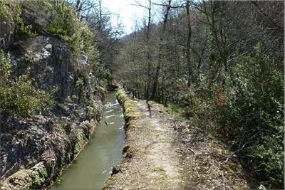 Canal del río Ayuda