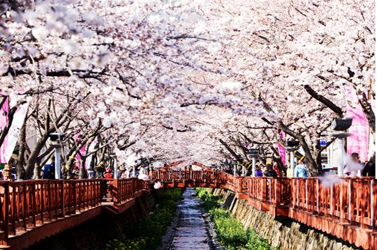 romance-bridge