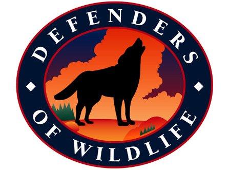 Defenders.jpeg