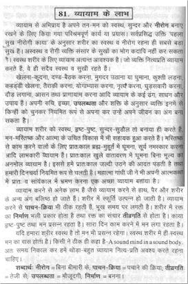 our national language hindi essay in hindi