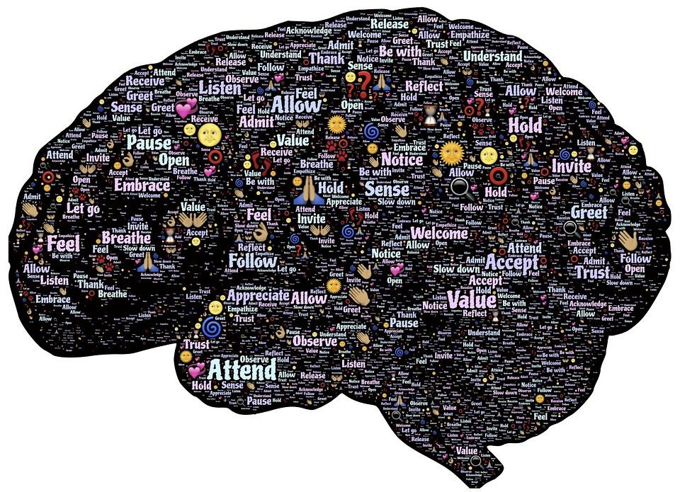 Brain, Mind, Mindset, Mindfulness, Presence, Meditation