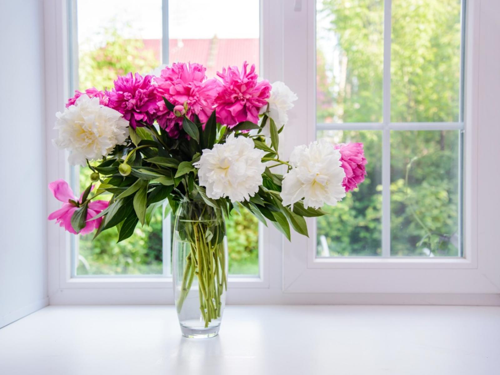 flowers fresh