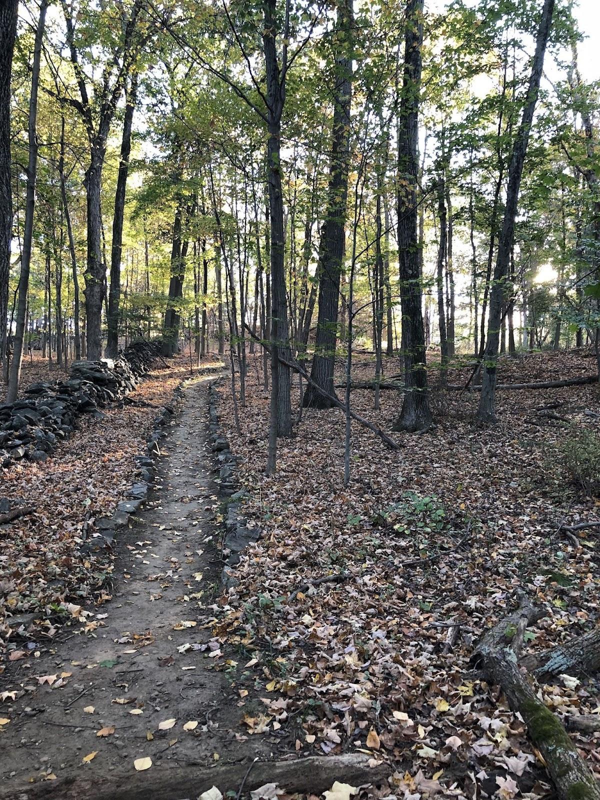 new york hiking hardscrabble trail