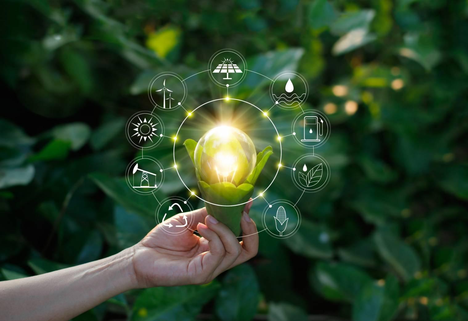 production électricité énergie renouvelable
