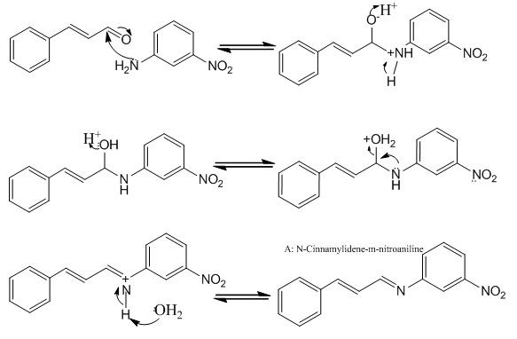 Lab Report on Reductive Amination | Artxy