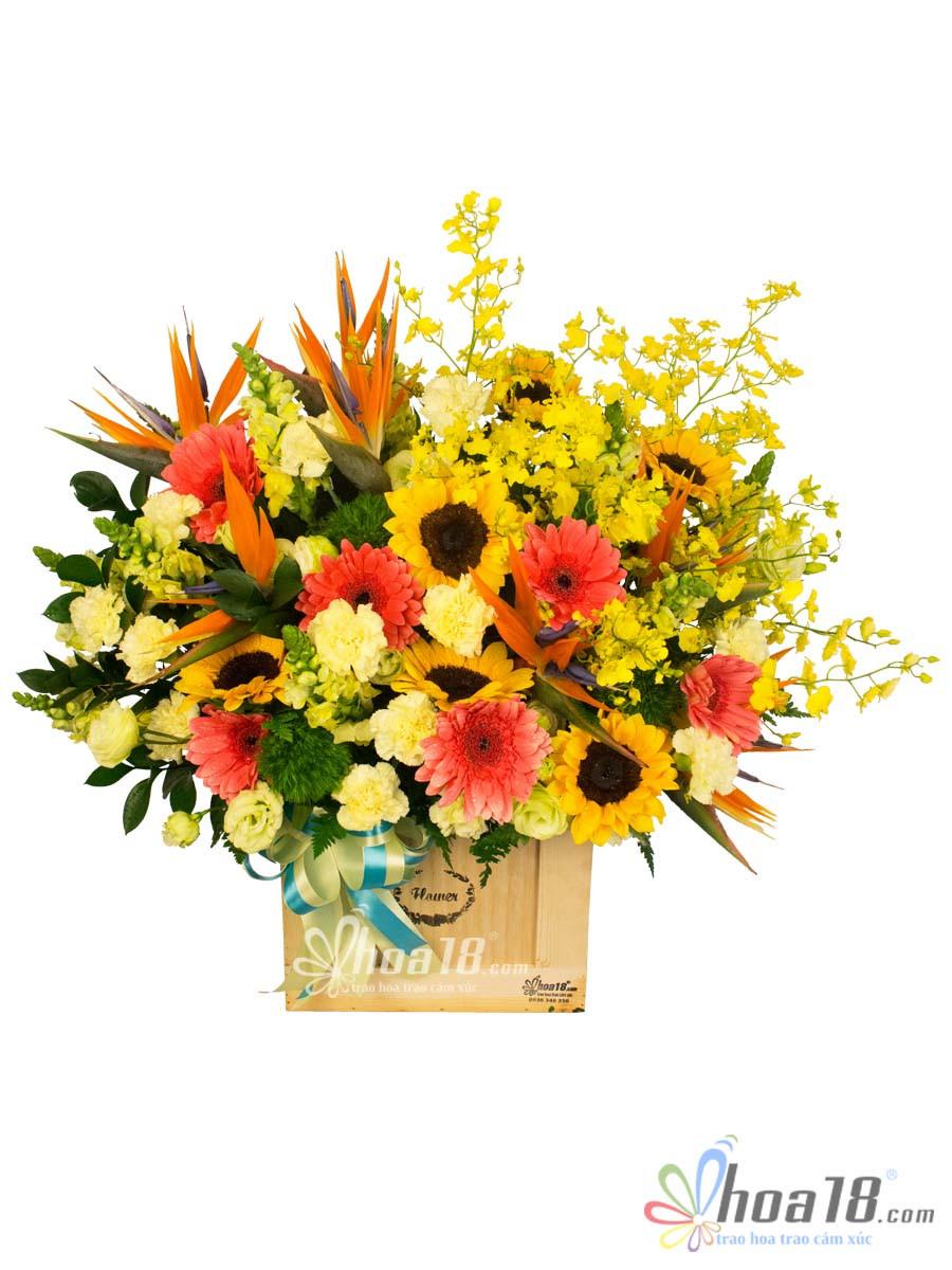 hộp hoa hướng dương đẹp