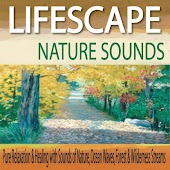 Lifescape Nature Sounds: Pure Relaxation & Healing With Sounds of Nature, Ocean Waves, Forest & Wilderness Streams