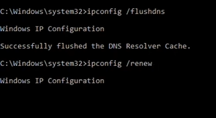 ipconfig flushdns and ipconfig renew command execution