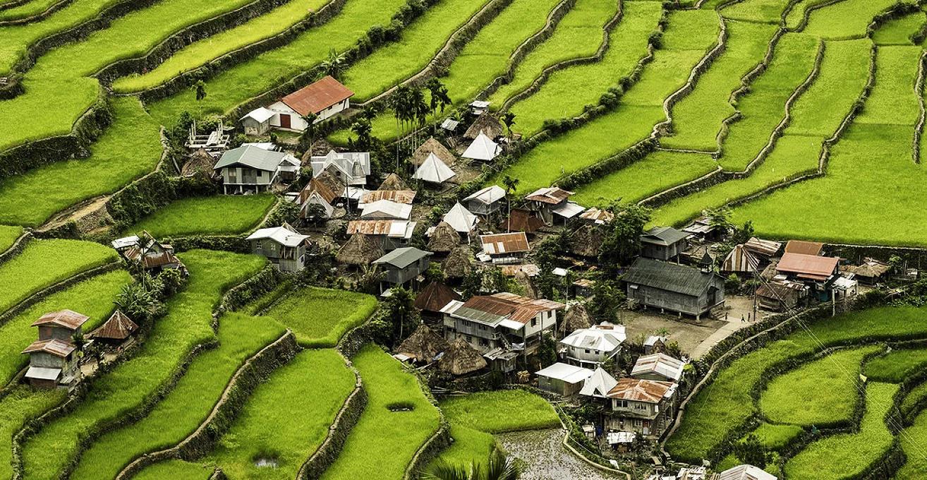 As maiores construções do mundo: terraços de arroz em Banaue