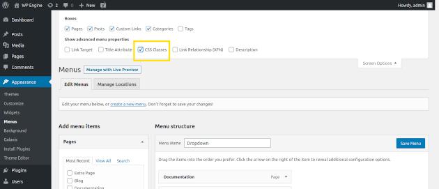 Screenshot of how to select CSS classes in WordPress menus