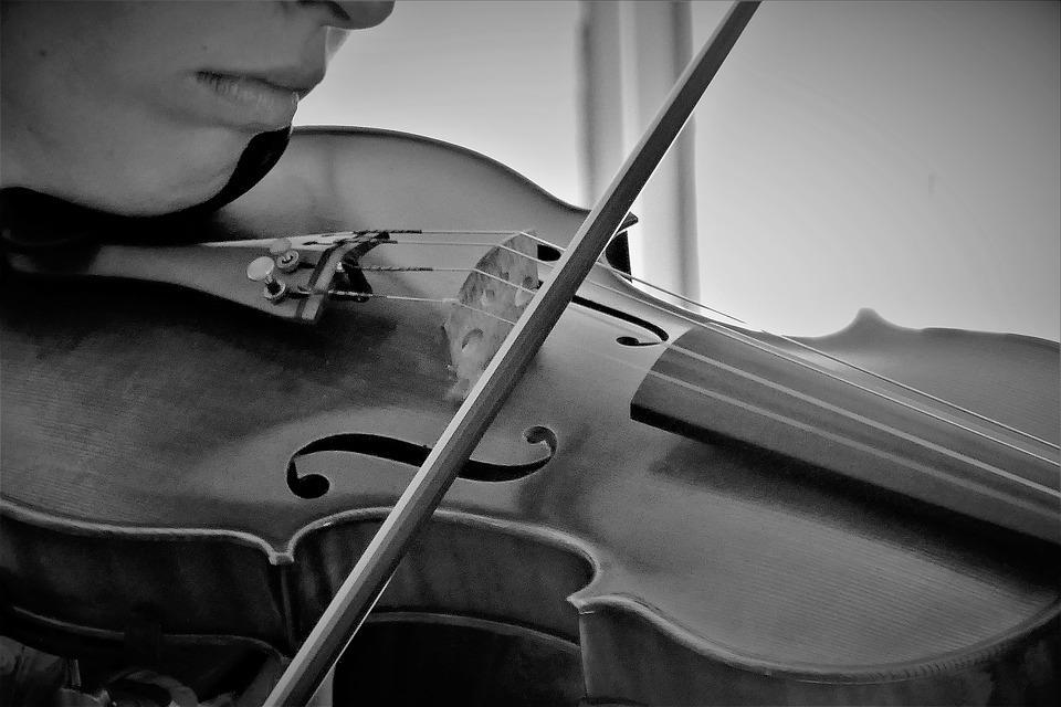 Violin, Musical Instrument, Music, Instrument, Classic